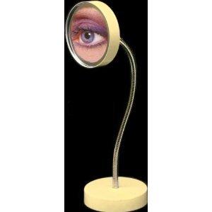 magic focus big eyes standing vanity gooseneck 5x mirror in bone beauty. Black Bedroom Furniture Sets. Home Design Ideas