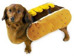 Funny Hotdog Costume