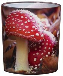 Beautiful Nature Red Toadstool Candle Pot By White Candle Company from White Candle Company