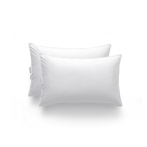 zestilk-goose-down-and-feather-extra-firm-pillow-set-of-2-white-standard-pdp02
