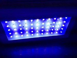 Lse Lighting Ultimate 120W (55X3W Cree) Led Xr-Reef Aquarium Reef Fixture