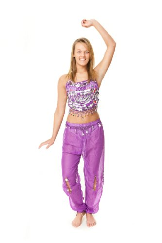 Beaded Top & Harem Pants Belly Dance Costume (Purple/silver) S/M