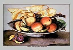 30 x 20 Stretched Canvas Poster Bowl with Peaches and Plums