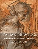 img - for Italian Drawings at The Fitzwilliam Museum, Cambridge (Fitzwilliam Museum Publications) book / textbook / text book