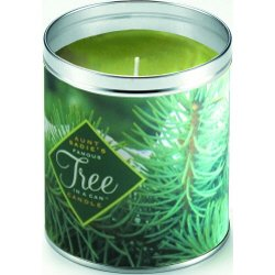 Aunt Sadie's Pine Boughs Tree Candle