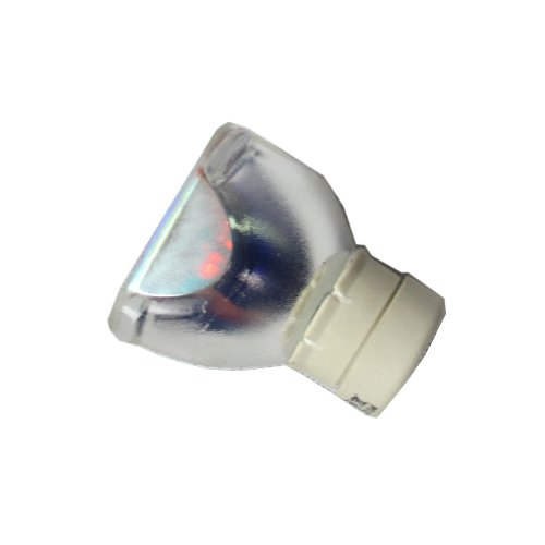 Dlp Projector Replacement Lamp Bulb For Dell 310-8290 725-10106 1800Mp