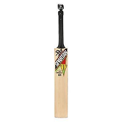 Spartan CG Hammer Kashmir Willow Cricket Bat, Short Handle