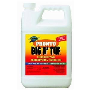 pbi-gordon-9561077-1-gallon-big-tuf-weed-killer