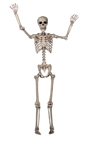 Seasons Crazy Bonez Pose-N-Stay Skeleton