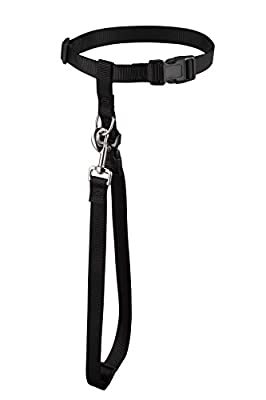 TODAYS SPECIAL OFFER!!! Hands Free Dog Training Leash with Adjustable Waistbelt. Great for Running, Jogging, and Biking. Get Fit with Your Pet and Improve Your Health Now!