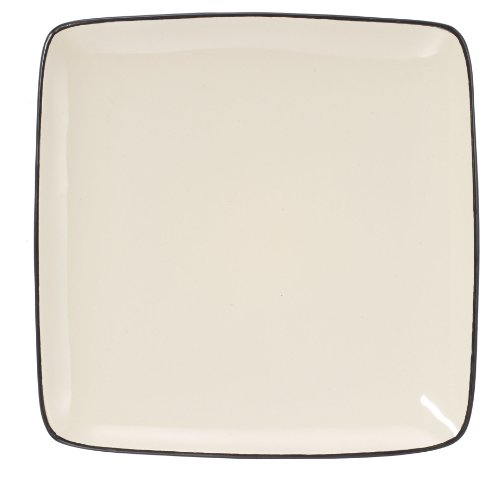 or dinner dishwasher safe microwave safe 10 5 square dinner plate
