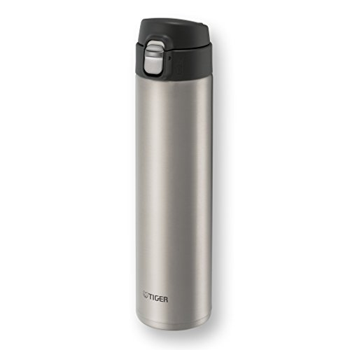Tiger Insulated Travel Mug, 20-Ounce, Clear Stainless (Tiger Coffee compare prices)