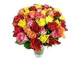 Petite Roses - 40 Assorted