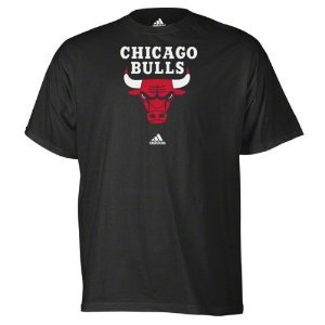 NBA Chicago Bulls Primary Logo T-Shirt, Small, Black