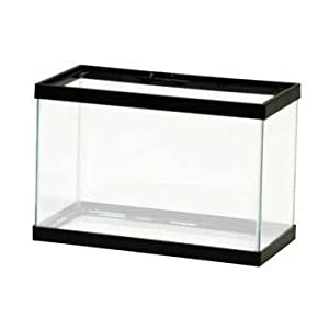 All glass aquarium aag10002 tank 2 5 gallon for 5 gallon glass fish tank