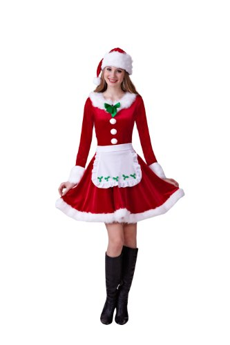 HGM Costume Women's Plus-Size Mrs. Santa Claus
