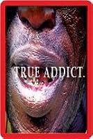 True Addict