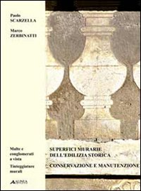 superfici-murarie-delledilizia-storica-ediz-italiana-e-inglese-2