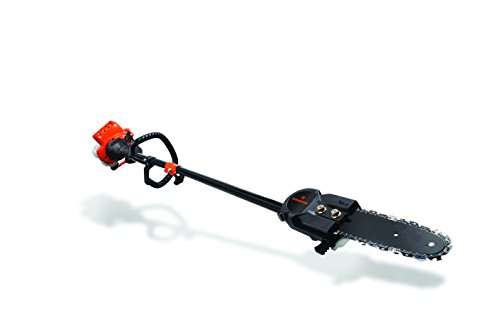 Remington RM2599 Maverick 25cc 2-Cycle 8-Inch Gas Pole Saw (Power Pole Saw compare prices)