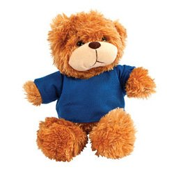 PLUSH BEAR WITH BLUE TSHIRT