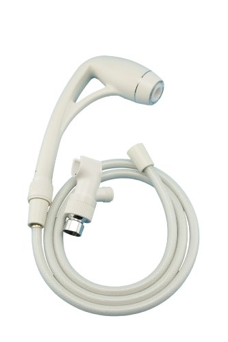 Oxygenics Body Spa Handheld Shower Kit, White