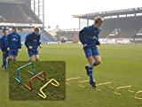 PRECISION TRAINING Step Training Hurdle