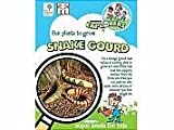 Children's Snake Gourd Seeds by T and M