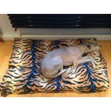 kosipetr-budget-cheap-medium-tiger-fleece-dog-beddog-bedspet-beddogbeddogbedspetbedpetbeds