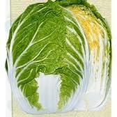 はるさかり2号[白菜]【タネ】小袋