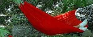 Red Island Bay Portable Hammocks With Carry Bag
