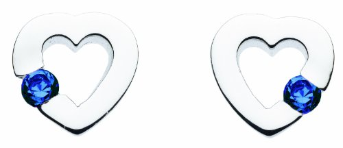 Imagen principal de Dew SP38808BL006 - Pendientes de mujer de plata con circonitas