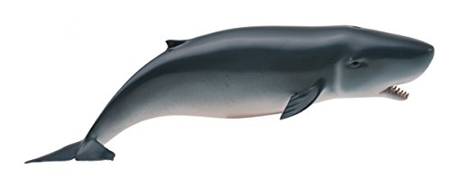 CollectA Sea Life Pygmy Sperm Whale #88653