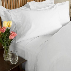 sheetsnthings Percale Queen size 300 Thread Count Solid White Sheet Set 100 % Egyptian Cotton (Deep Pocket)Percale Sheets at Sears.com