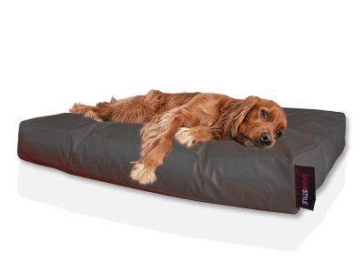Bild von: Dogstyle Hundebett Hundekissen Nylon 120x80 schwarz