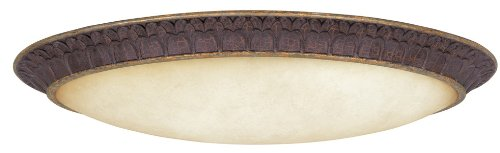 World Imports Lighting 7201-24 Fluorescent Olympus Tradition Oval Flush Mount Fixture, Crackled Bronze with Silver