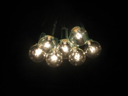 How About 100 Foot Globe Patio String Lights Set of 100 G40 Clear Bulbs with Green Cord - Michel ...