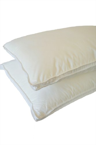 Natural Shells Bedding