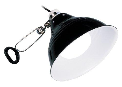 Produktbeispiel aus der Kategorie Beleuchtung