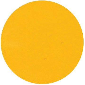 ピカエース カラーパウダー 着色顔料 マリーゴールド