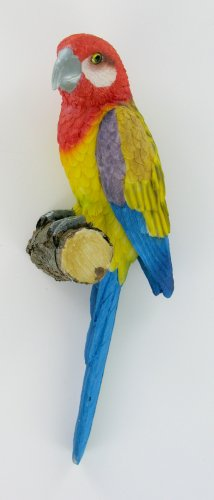 Tropical Parrot on Birch Wall Art Bathroom Decoration