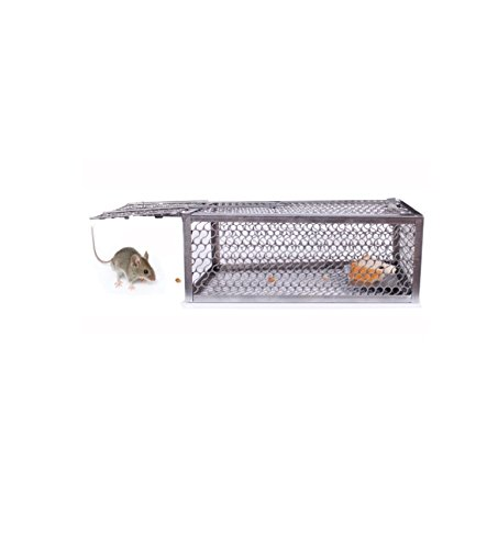 mice-and-rodent-control-in-a-small-metal-cage-classic-style-chep-rats-mouse-trap-catch-home-indoor-o