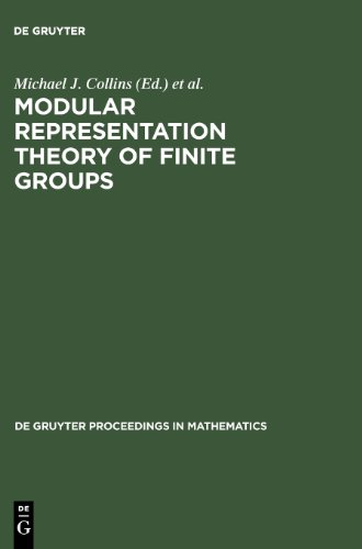 Modular Representation Theory