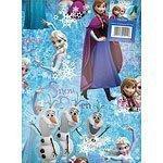 Disney Frozen Gift Wrap 2 Sheet 2 Tags