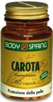BODY SPRING CAROTA 60CPS