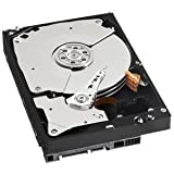 WESTERN DIGITAL 3.5インチ内蔵HDD 1TB SATA/6.0Gb 7200rpm 64MB WD1002FAEX-R