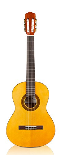 Cordoba Guitars Protege C1 Acoustic Nylon String Classical Guitar, 3/4 Size