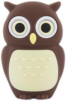 BONE Owl Driver - USB flash drive - 4 GB - USB 2.0 - brown, multicolour by RaidSonic Technology