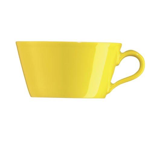 Lenox Arzberg Tric Sun Tea Cup