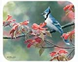 Fiddler's Elbow Blue Jays Mouse Pad