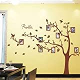 Large Brown 3D DIY Photo Tree PVC Wall Decals/Adhesive Family Wall Sticker Mural Art Home Decor
